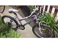 Girl's Bike, good condition