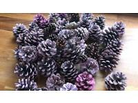 Approx 45 different coloured pinecones - used for rustic wedding / home decor