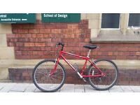 Raleigh Mountain Bike with Road Forks - Perfect Commuter