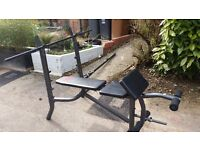 Multi Weight Bench with attatchments and extras. £65 ovno