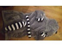 Boys racoon dressing gown