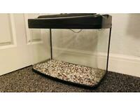 55 litre curved front aquarium fish tank with lid and lights