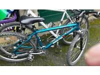 mountain bike 24 gears muddy fox