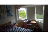 Lovely, Bright, Double Room in Quiet House, Chapel Allerton