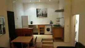 Fantastic one bed flat for rent in leith (available immediately)