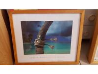 "Beech-framed Print of Chris Simpson – ""Island Breeze"""