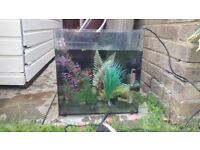 Fish tank with decorative flowers, heater and filter kits.