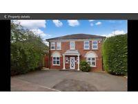 Rent Luxury home Barton Hills £1800.00 pcm