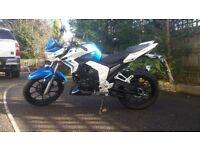 Brand new lexmoto venom 125cc blue white