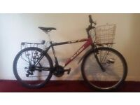 Raleigh Rave Mens Mountain Bike with Basket