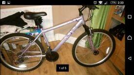 ladies bike £40