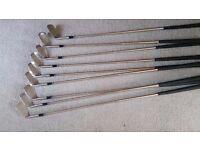 Ladies steel shaft set of golf clubs