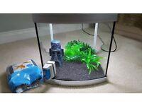 Aqua Start 320 fish tank and complete set up!