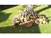 Fire /wood logs.