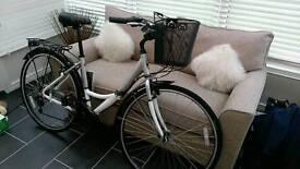 Elyse woman's bike