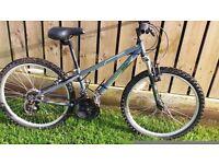 Apollo Swittch Mountain Bike