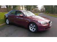 2005 / 55 BMW 525d SE, FULL SERVICE HISTORY, FULL MOT, IMMACULATE
