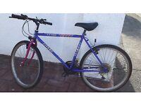 Men's mountain bike - reduced price!
