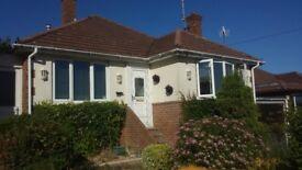 2 Bedroom Detached House to rent Falmer Avenue-NO FEES