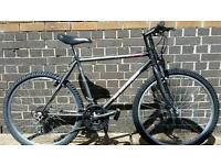 Mens Delta Jets Shaniko Mountain Bike