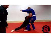 Muay Thai Boxing,Kettlebell, Circuit,Brazilian Jiu Jitsu Training at Absolutely Fitness Gym Langley