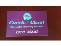 Domestic cleaner - occasional weekends