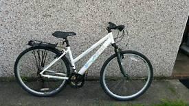 Large women's mountain bike