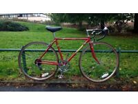"Men's road bike racer. 19"" frame crusader bicycle womans"