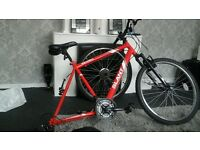 red slant mountain bike for sale