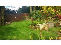 Ju drop gardening . Landscaping hedge cutting lawn cutting . And rubbish clearance.