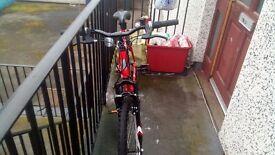 Apollo slant bicycle