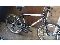 """Men's mountain bike with 26"""" alloy wheels very good tyres 18 gripshift gears vgc gwo"""