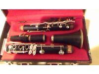 Odyssey Clarinet in modern fitted case Odyssey Clarinet in modern fitted case