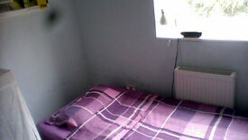 Room to let in Bangor from mid Sept/Oct to end of October
