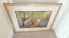 Top quality framed print 'Bluebell Woods' in very good condition