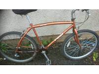 APOLLO REAL MENS MOUNTAIN BIKE,19 INCH FRAME,, 26 INCH WHEEL'S,, 18 GEARS, GOOD CONDITION