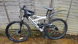 Saracen mountain bike