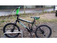 FREESPIRIT TERROR BMX BIKE