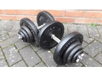 YORK 50KG CAST IRON DUMBBELL WEIGHTS SET