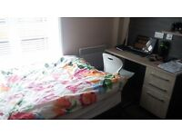 14 weeks £2450 - TOWN CENTRE - Superior STUDENT Studio Apartment - Inclusive of 'all bills'