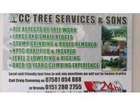 Craig Cumming tree service