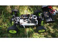 RC CAR/ 1/8 GV Rex X NITRO buggy