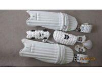 Cricket Set (senior Youth) - Bat, Pads, Gloves