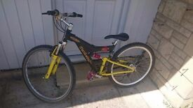 Youths Boys Mountain Bike, full suspension. Raleigh Max Age 11-16?