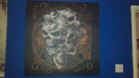 Large Skull Canvas.