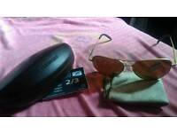 New Serengeti aviator carrara 8296 sunglasses