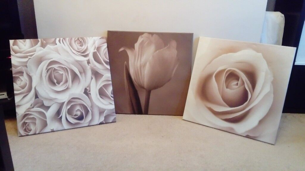 Set of 3 Pink Roses on Canvas 58cm x 58cm