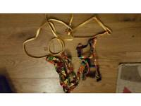 2 guinea pig harness and lead