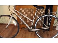 Ladies Bicycle Needs Attention