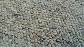 Brand new roll of gala heavy duty carpet 12 X 12ft